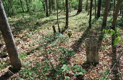 Jenkins-Stanley Family Cemetery