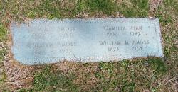 William Milton Amoss