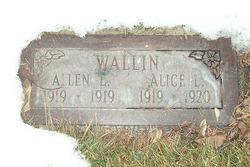 Alice Wallin