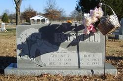 Troy V Bagwell
