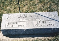 Robert Littleton Amber