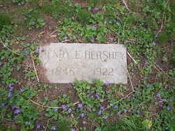 Henry E Hershey
