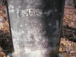 Eliza A. Anderson