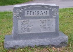Almanza Pegram