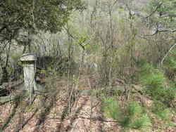 Hiram Harris Cemetery