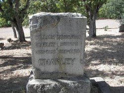 Andrumeda Hurst Charley