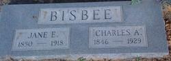 Mary Jane <I>Estes</I> Bisbee