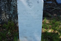 Junius J Adams, Jr