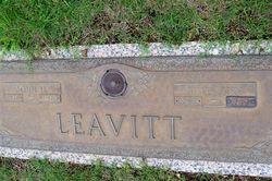 Julia Ann <I>Williams</I> Leavitt