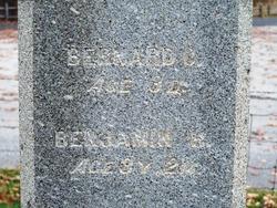 Bernard C Allen