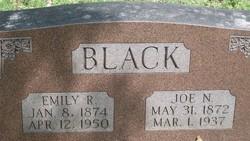 Joe N. Black
