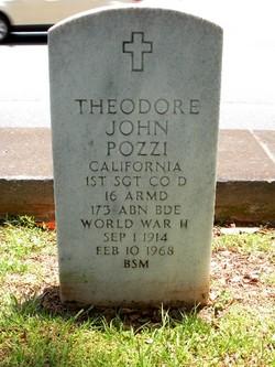 Theodore J Pozzi