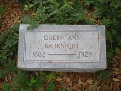 Queen Ann Elizabeth <I>Johnson</I> Bauknight