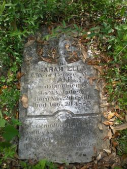 Sarah Ella <I>Matheney</I> Blake