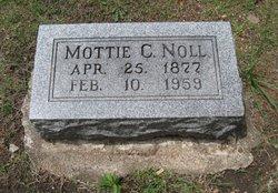 Motta Mottie Forest <I>Cash</I> Noll