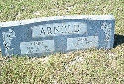 Cisro Arnold