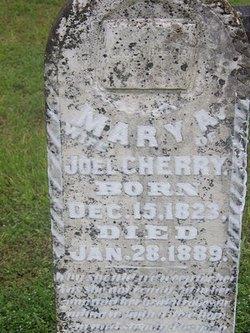Mary Ann <I>Hines</I> Cherry
