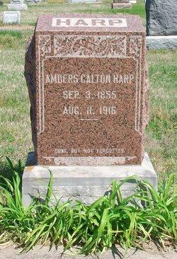 Ambers Calton Harp