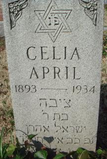 Celia April