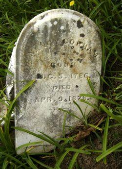 Nancy <I>Graves</I> Gorham