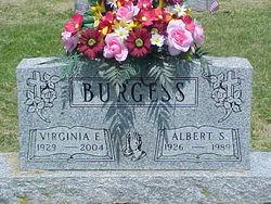Albert S Burgess
