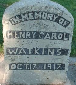 Henry Carroll Watkins