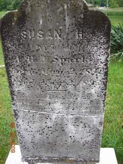 Susan H Sparks