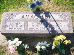 Robert A. Amacher