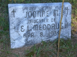 Joanne M Meddaugh
