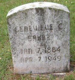 "Genevieve ""Jenny"" <I>Coleman</I> Baker"