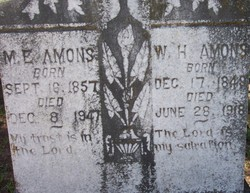William Howell Ammons