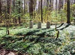 Trudell Burial Plot