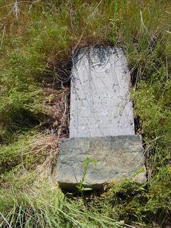 Mary E. Hamilton