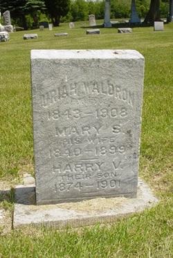 Harry V Waldron