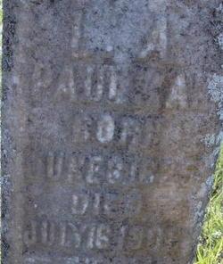 Lydia Antoinette <I>Walker</I> Paulman