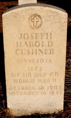 Joseph Harold Cushner