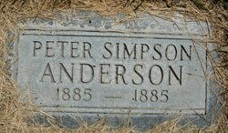 Peter Simpson Anderson