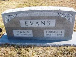 Eliza Ann <I>Cowlishaw</I> Evans