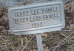 Teddy Leon Hamill