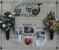Robert A Palmer