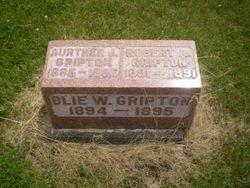 Arthur J. Gripton