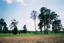 Round O Baptist Cemetery