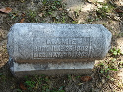 Mamie Cobb