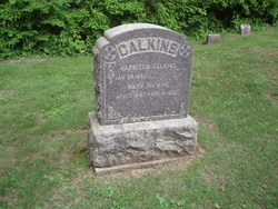 Mary <I>Hawver</I> Calkins