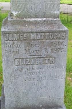 Elizabeth Mattocks