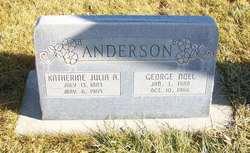 George Noel Anderson
