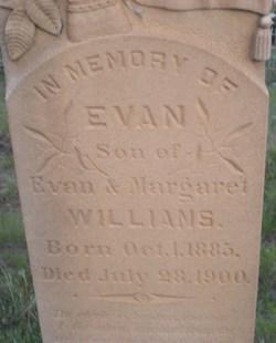 Evan Williams, Jr