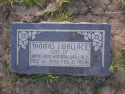 Thomas J Wallace