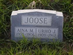 Aina M Joose