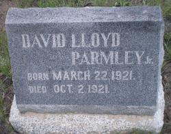 David Lloyd Parmley